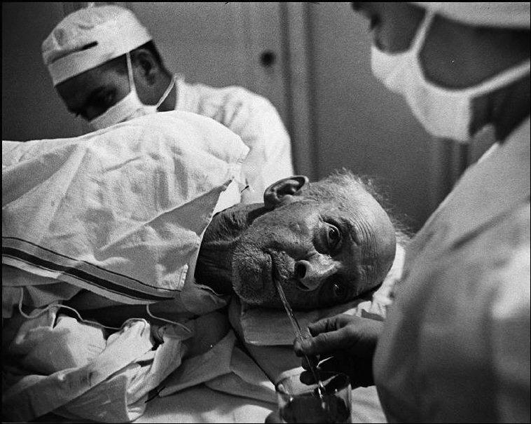 Доктор Цериани оперирует старика
