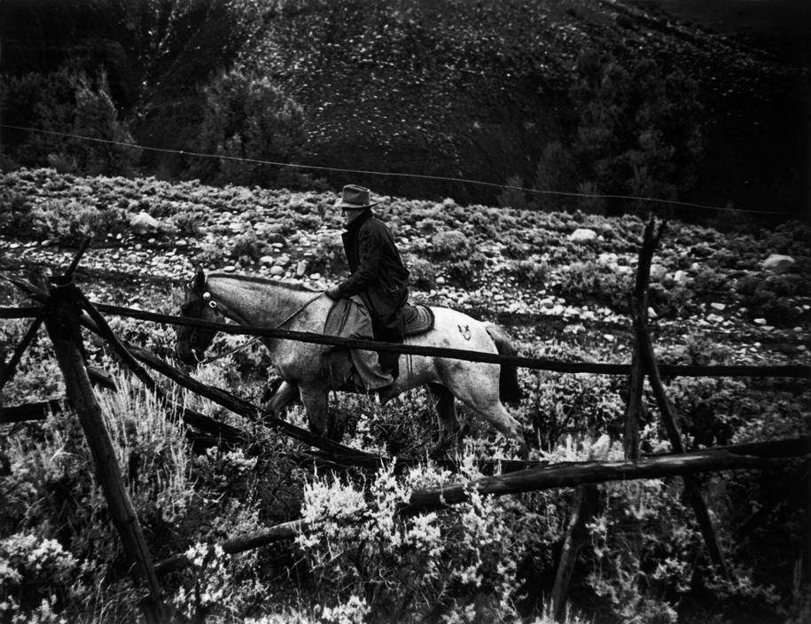 Сельский доктор Цериани едет навестить пациента на лошади