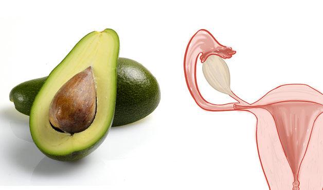 авокадо - яичники