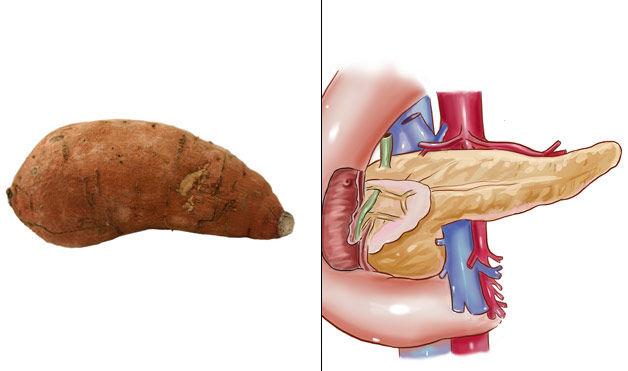 сладкий картофель - поджелудочная железа