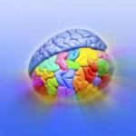 тренировка эмоционального интеллекта