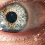 Eye'll be Seeing You
